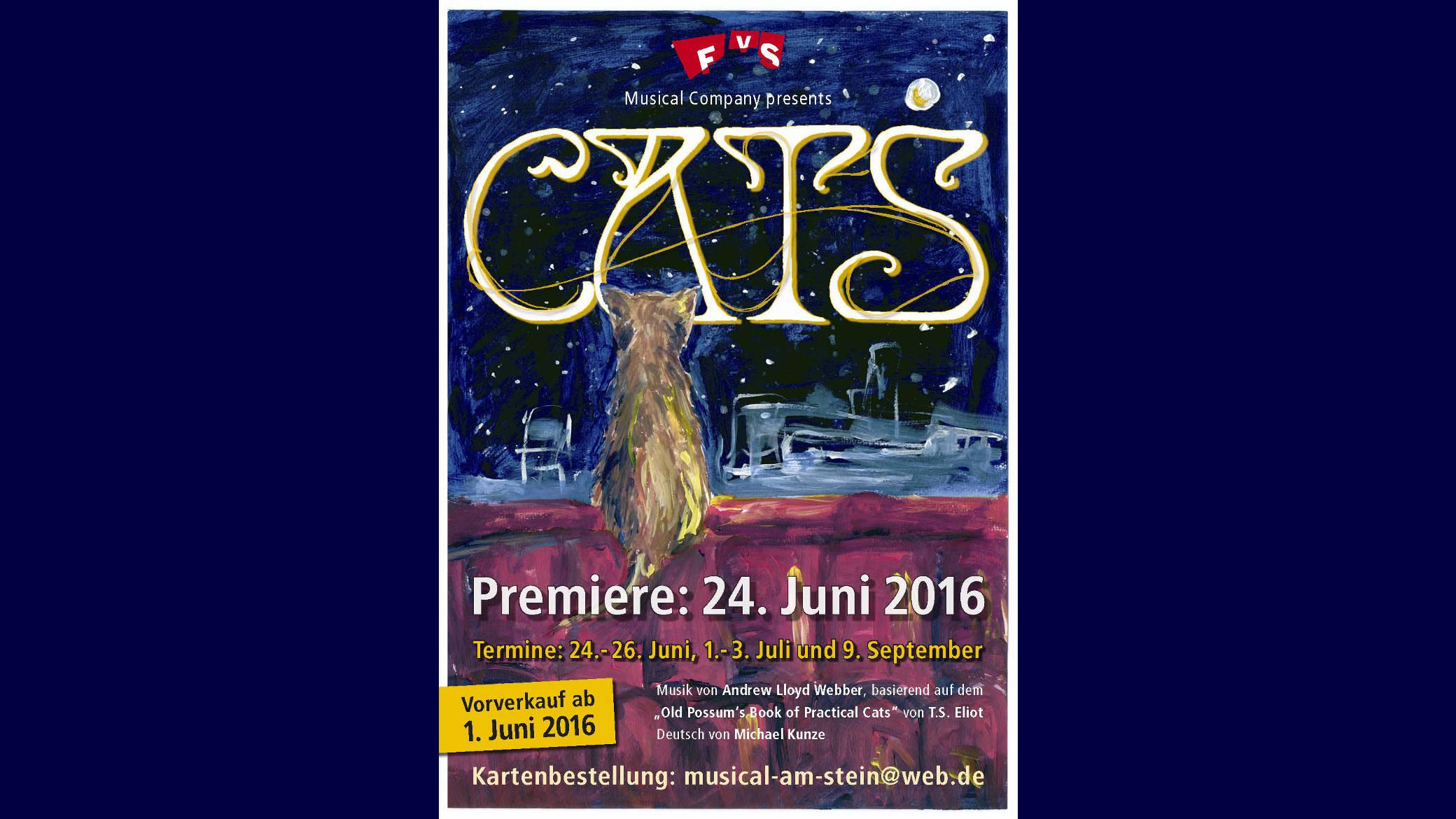 http://www.steingymnasium.de/wp-content/uploads/2016/06/catsslider2016.jpg