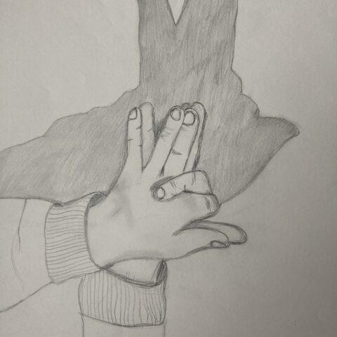 Hände - Schattenspiele 3