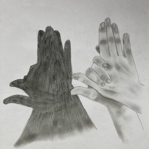 Hände - Schattenspiele 2