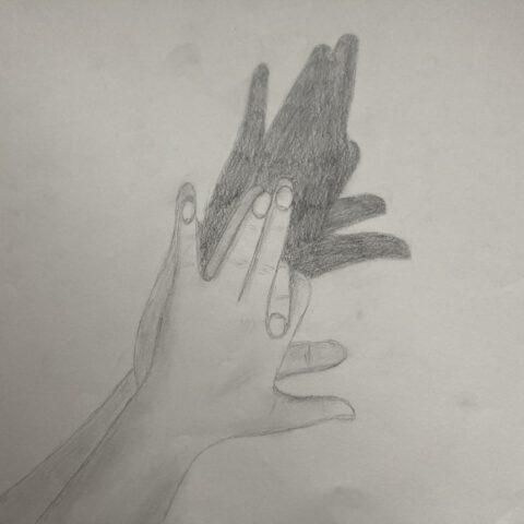 Hände - Schattenspiele 1