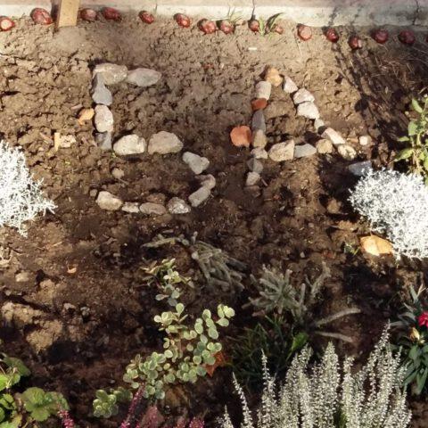 Gartenbau14