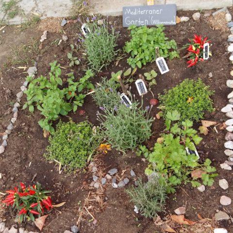 Gartenbau15