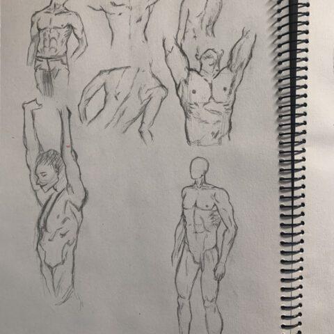 Körperstudie